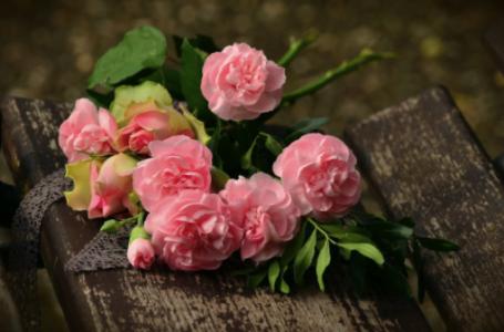 Tot ce nu știai despre trandafiri